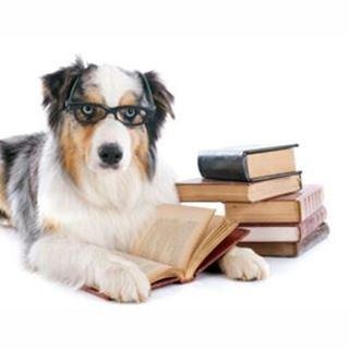 Afbeelding voor categorie boeken